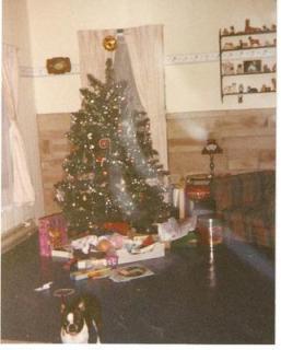 christmas-1993-orb